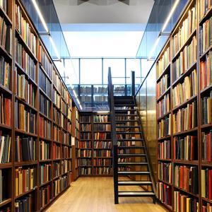 Библиотеки Вожаели