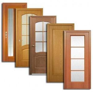 Двери, дверные блоки Вожаели